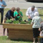 WG Aufbau Merseburg Bepflanzung des Hochbeetes zu 3. Inklusionstagen in Merseburg